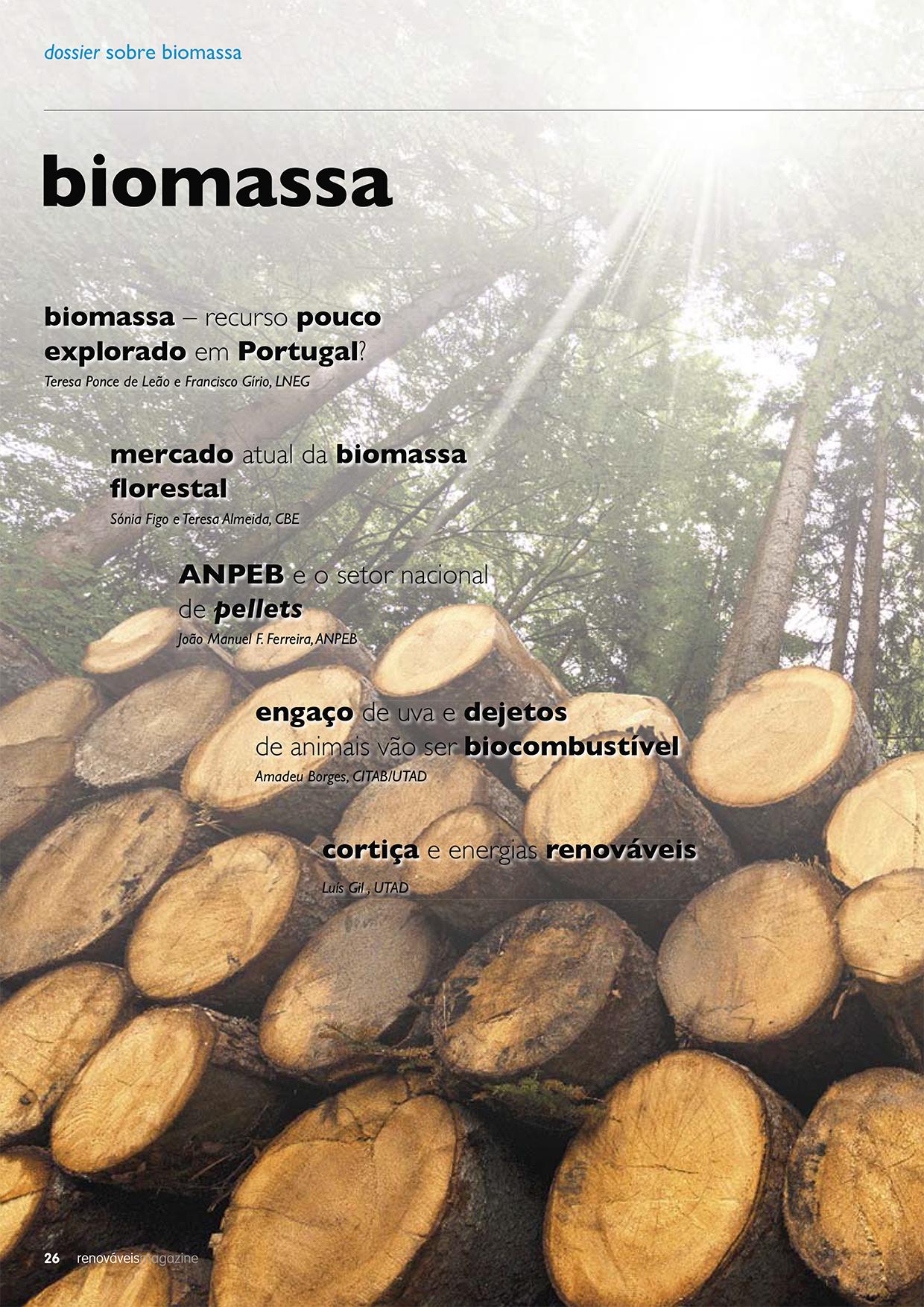 O dossier Biomassa da edição 26