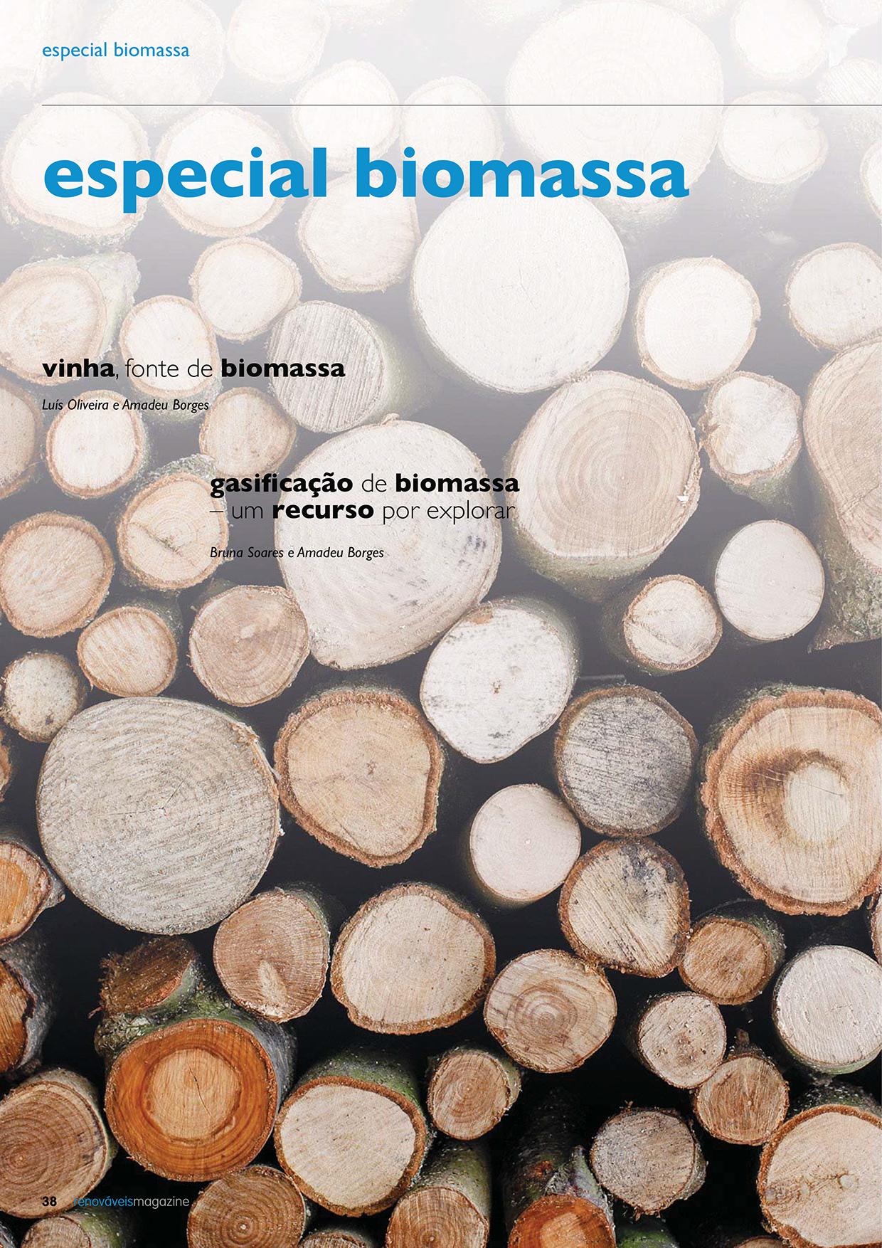 Dossier sobre o Especial biomassa