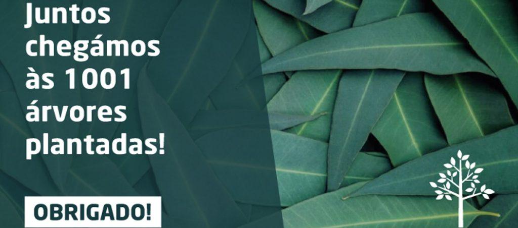 Com o apoio de todos a F.Fonseca conseguiu plantar 1001 árvores na Austrália!