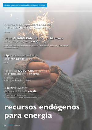Dossier sobre recursos endógenos para a energia